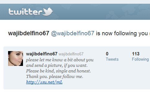 A typical Twitter spam account